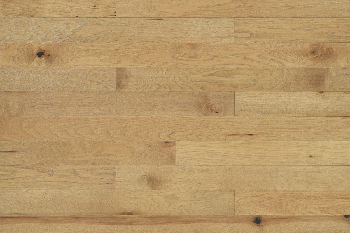 The Brick & Board Collection Parlour Main Photo by Real Wood Floors